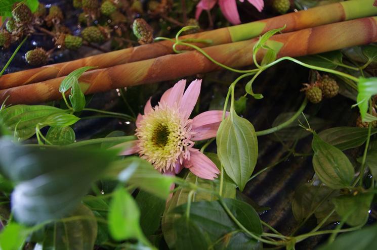 メインサーバーのカウンター周辺は個性的なアートフラワーを展示。 「やちむんの花器」に生け込まれた草花!